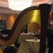 Harp
